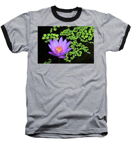 Pond Beauty Baseball T-Shirt