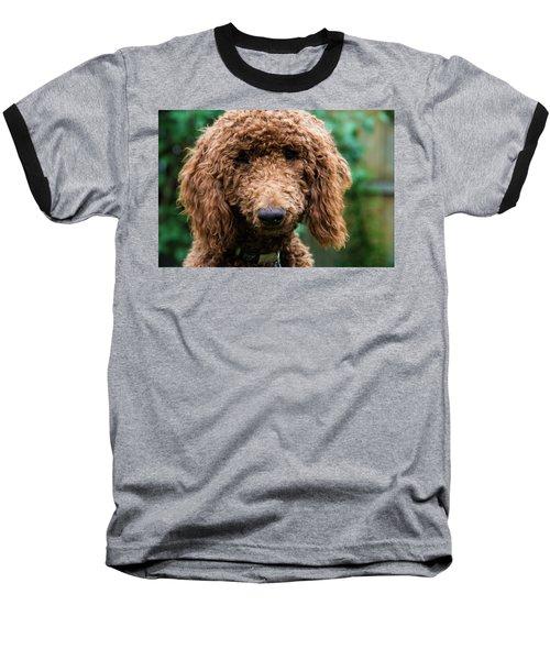 Poodle Pup Baseball T-Shirt