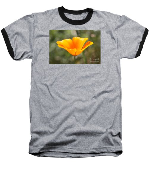 Poppy Flower Baseball T-Shirt by Cathy Dee Janes