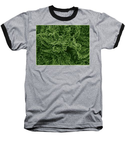 Poppy Leaves Baseball T-Shirt