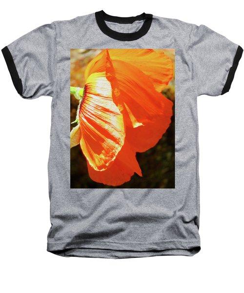 Poppy Profile - Beauty In The Garden Baseball T-Shirt by Brooks Garten Hauschild