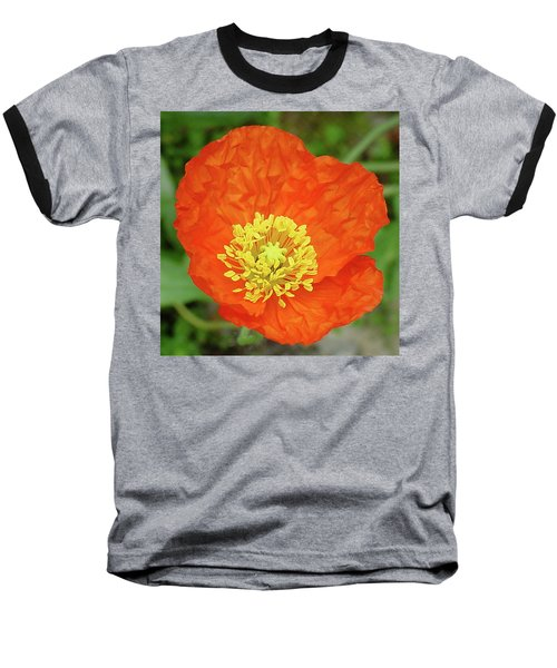 Poppy Baseball T-Shirt