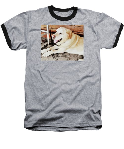 Porch Pooch Baseball T-Shirt by JAMART Photography