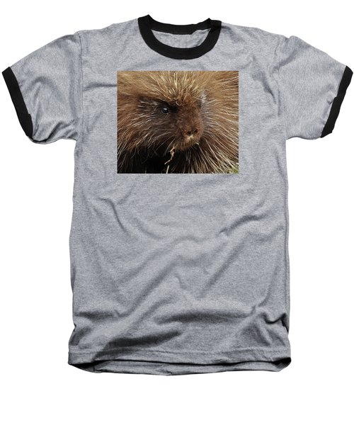 Baseball T-Shirt featuring the photograph Porcupine by Glenn Gordon