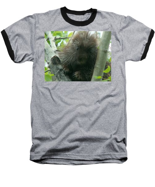 Porcupine Tree Baseball T-Shirt