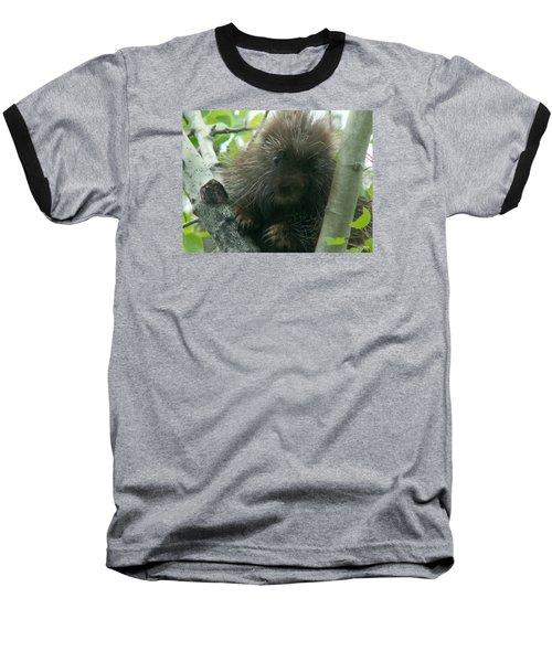 Porcupine Tree Baseball T-Shirt