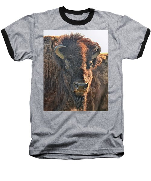 Portrait Of A Buffalo Baseball T-Shirt