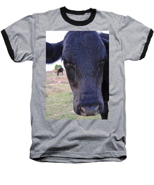 Portrait Of A Cow Baseball T-Shirt