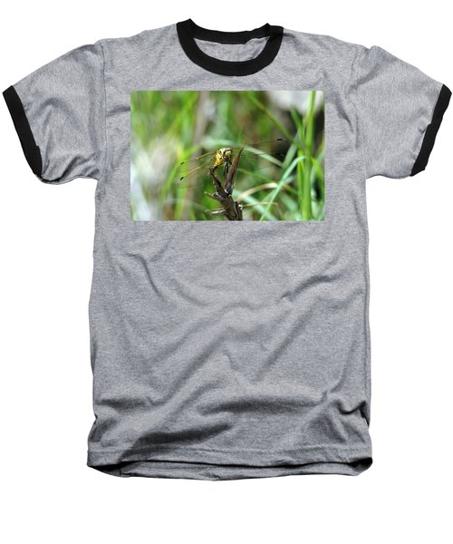 Portrait Of A Dragonfly Baseball T-Shirt