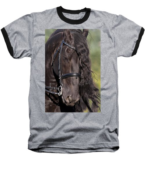 Portrait Of A Friesian Baseball T-Shirt by Wes and Dotty Weber