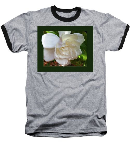 Baseball T-Shirt featuring the photograph Portrait Of A Gardenia by Ginny Schmidt