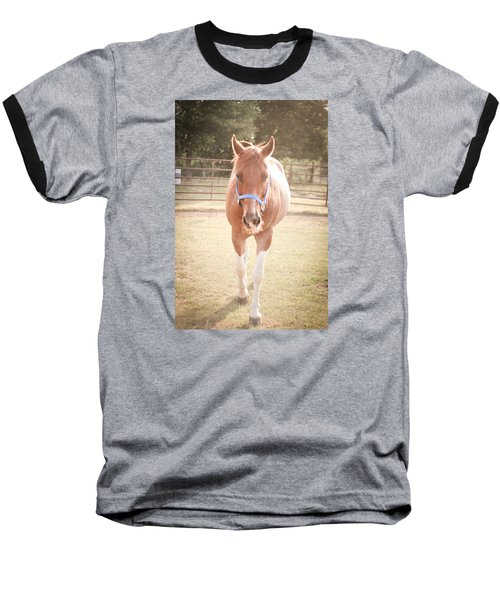 Portrait Of A Light Brown Horse In A Pasture Baseball T-Shirt by Kelly Hazel