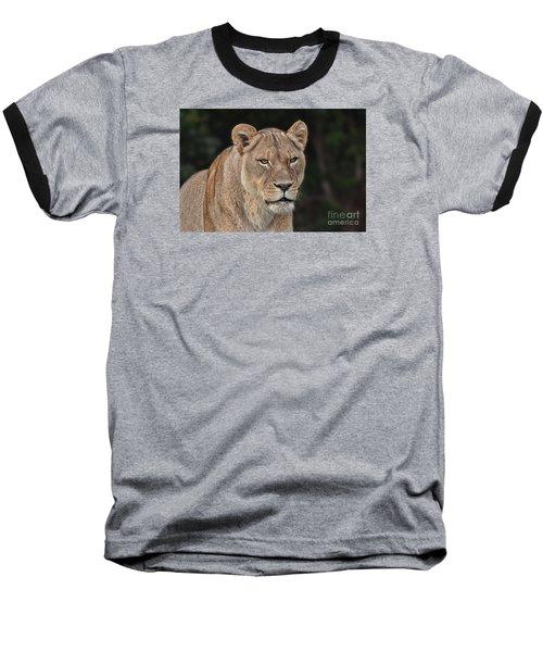 Portrait Of A Lioness II Baseball T-Shirt by Jim Fitzpatrick