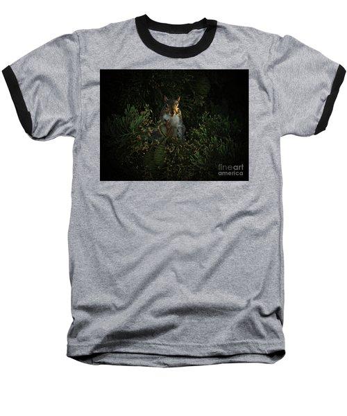 Portrait Of A Squirrel Baseball T-Shirt