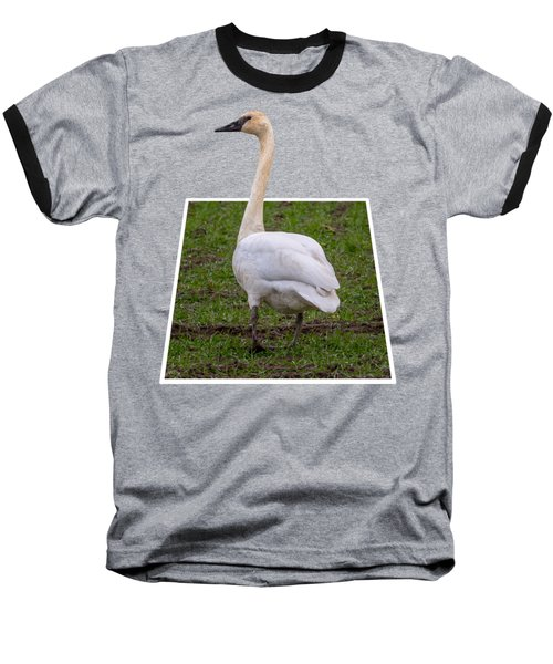 Portrait Of A Swan Out Of Frame Baseball T-Shirt