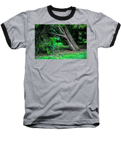 Baseball T-Shirt featuring the photograph Portrait Of A Tree by Madeline Ellis
