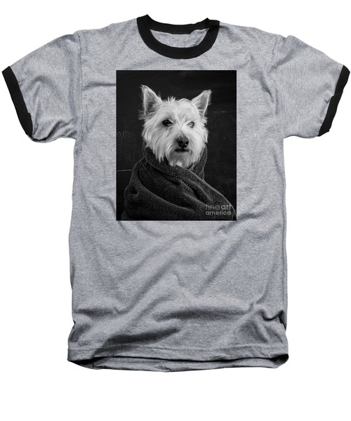 Baseball T-Shirt featuring the photograph Portrait Of A Westie Dog 8x10 Ratio by Edward Fielding