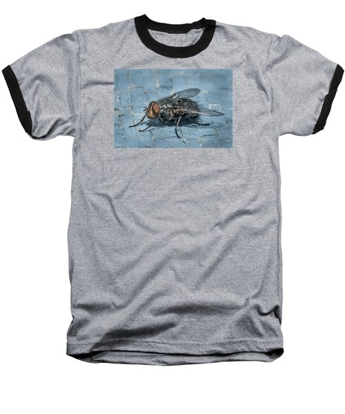 Portrait Of A Young Insect As A Fly Baseball T-Shirt by Greg Nyquist