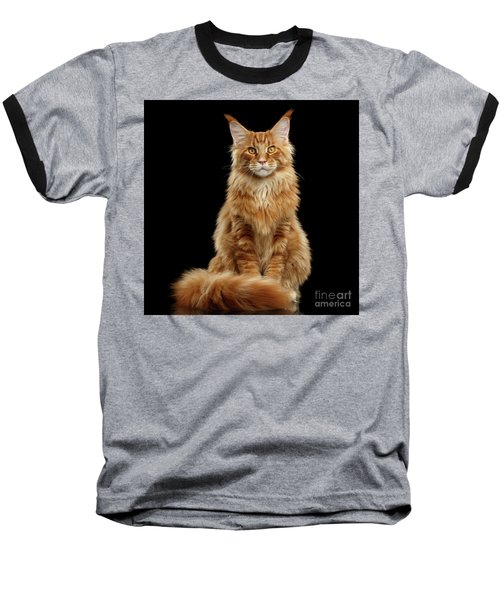 Portrait Of Ginger Maine Coon Cat Isolated On Black Background Baseball T-Shirt