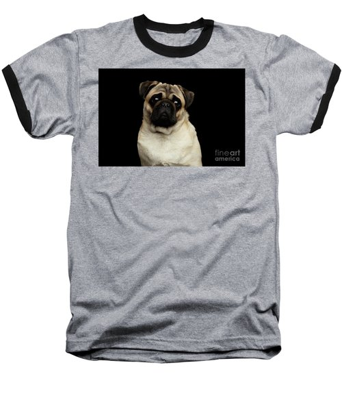 Portrait Of Pug Baseball T-Shirt by Sergey Taran