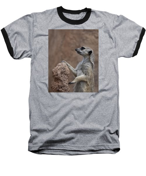 Pose Of The Meerkat Baseball T-Shirt by Ernie Echols