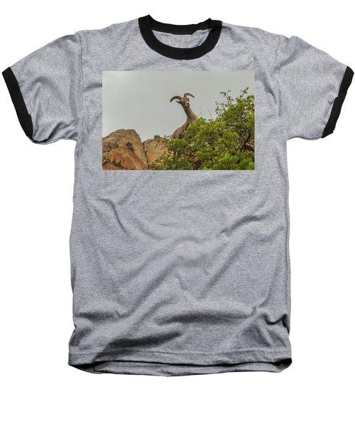 Posing For The Camera 2 Baseball T-Shirt