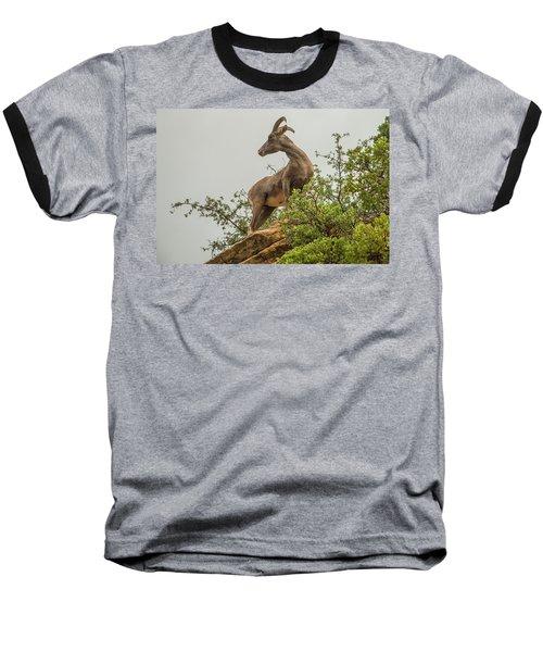 Posing For The Camera Baseball T-Shirt