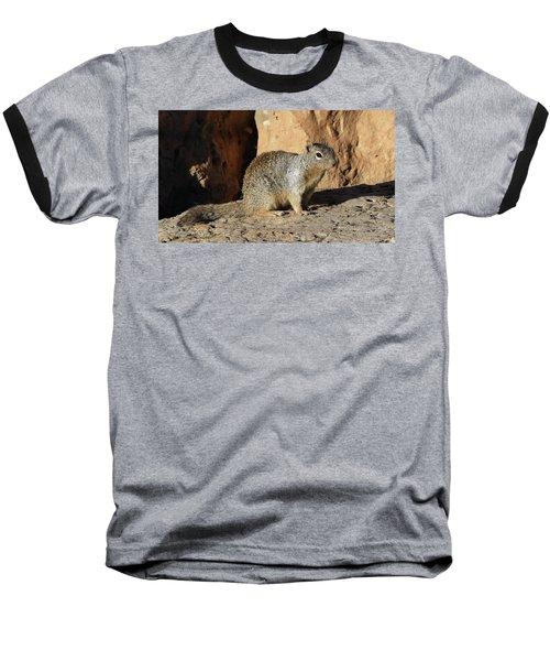 Posing Squirrel Baseball T-Shirt
