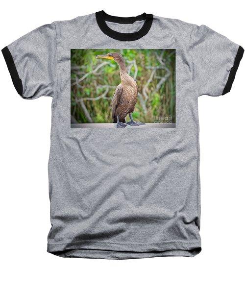 Posing Sea Bird Baseball T-Shirt