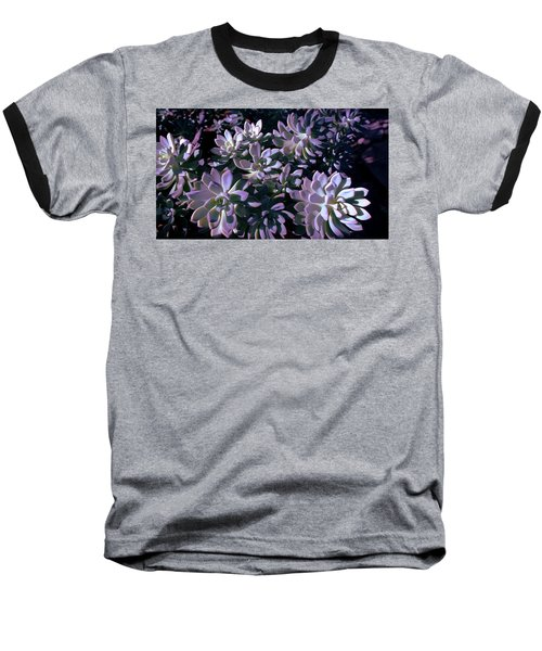 Baseball T-Shirt featuring the photograph Pot Mates 3 by M Diane Bonaparte