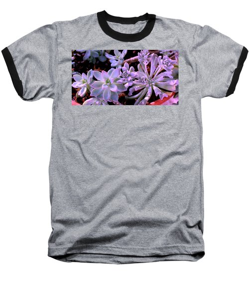 Pot Mates Baseball T-Shirt by M Diane Bonaparte