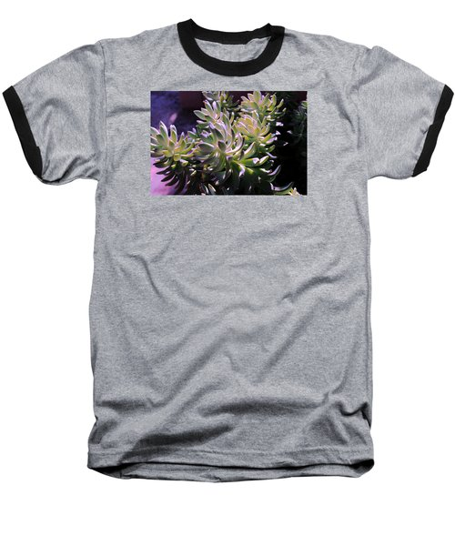 Baseball T-Shirt featuring the photograph Potmates 4 by M Diane Bonaparte
