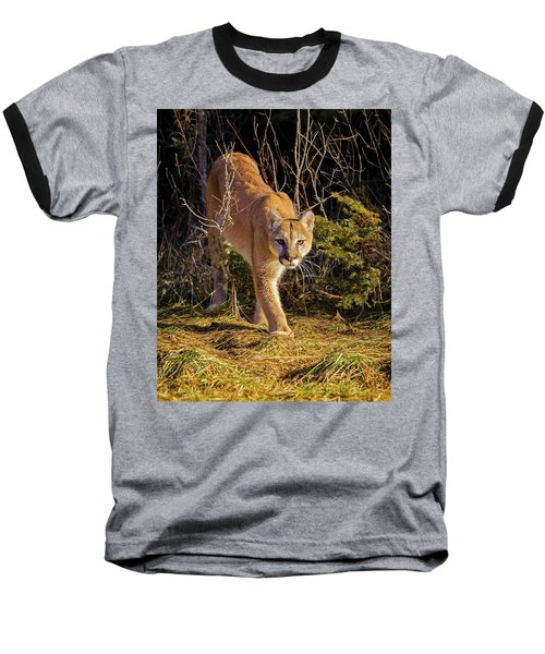 Power And Grace Baseball T-Shirt by Jack Bell