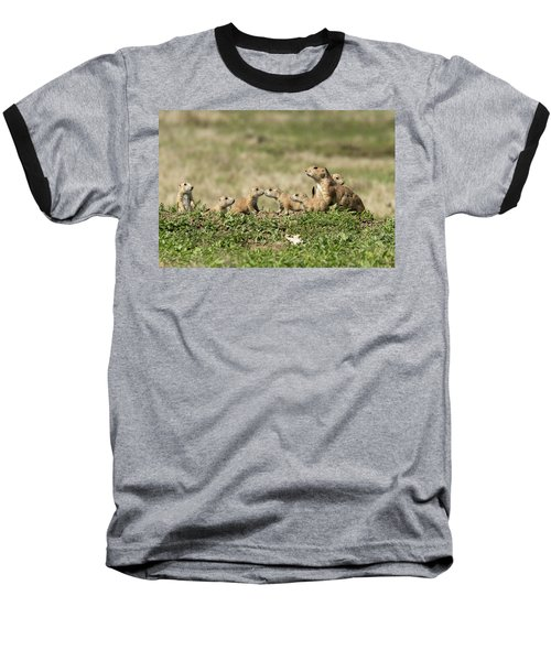 Prairie Dog Family 7270 Baseball T-Shirt