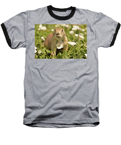 Prairie Dog Baseball T-Shirt by Nancy Landry