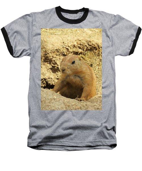 Baseball T-Shirt featuring the photograph Prairie Dog Peek by Robin Regan