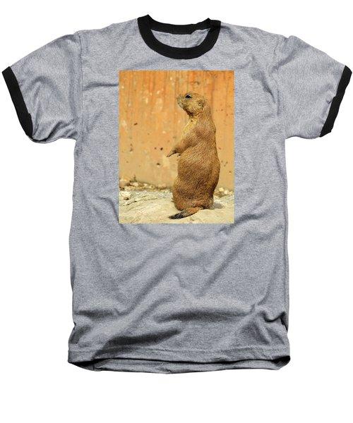 Baseball T-Shirt featuring the photograph Prairie Dog Profile by Robin Regan