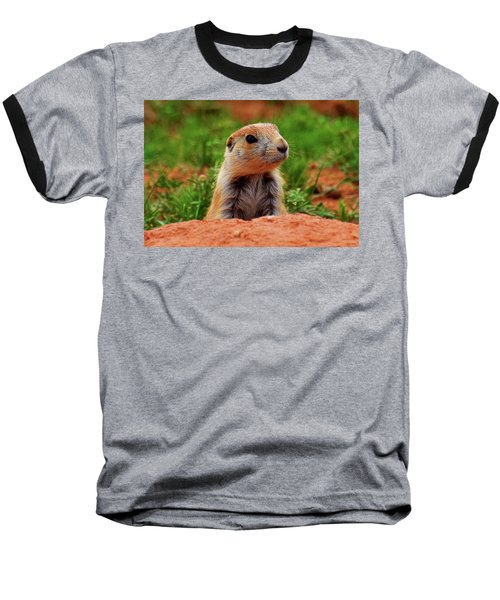 Baseball T-Shirt featuring the photograph Prairie Dogs 007 by George Bostian