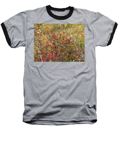 Prairie Rosehips Baseball T-Shirt