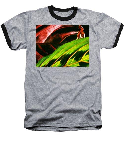 Prayer Plant Passing Baseball T-Shirt