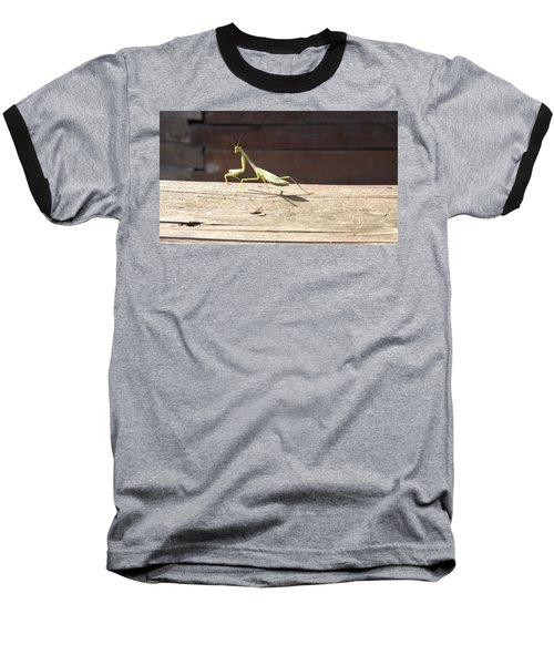 Praying Mantis  Baseball T-Shirt