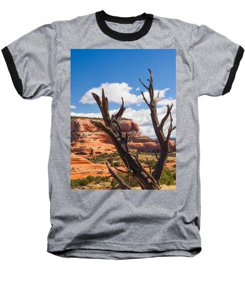 Preserved Baseball T-Shirt