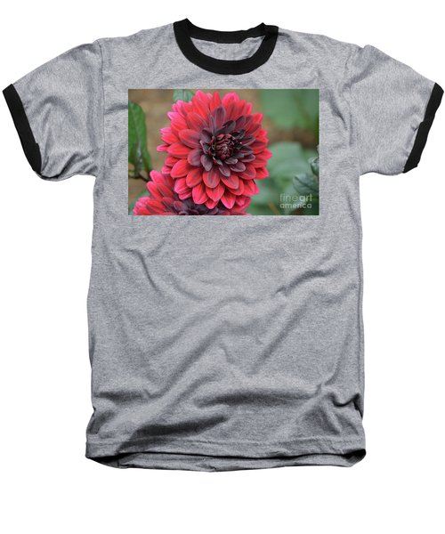 Pretty Blooming Red Dahlia Flower Blossom Baseball T-Shirt