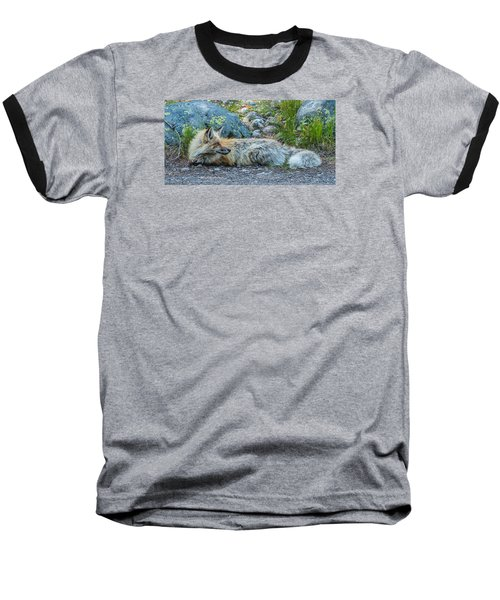 Baseball T-Shirt featuring the photograph Pretty Boy Fox In Spring by Yeates Photography