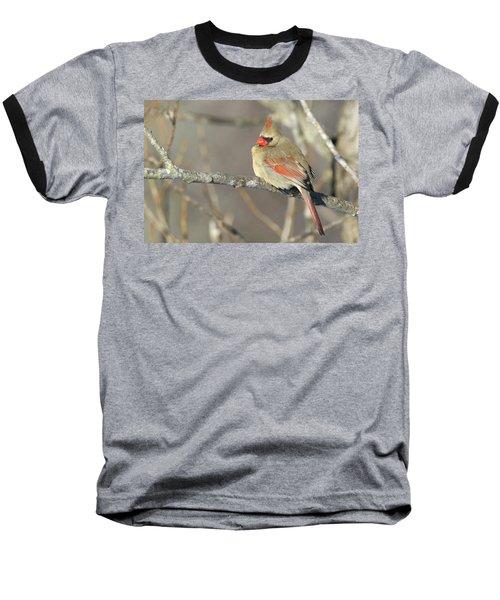 Pretty Female Cardinal Baseball T-Shirt