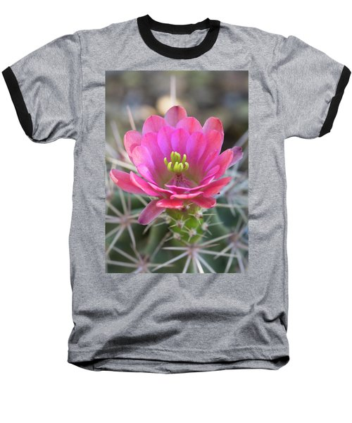 Baseball T-Shirt featuring the photograph Pretty In Pink Hedgehog  by Saija Lehtonen