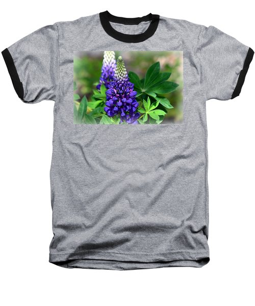 Pretty In Purple Baseball T-Shirt by Clarice  Lakota