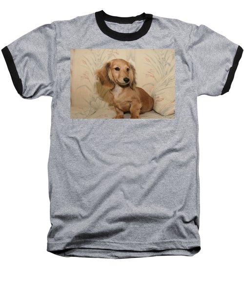 Pretty Pup Baseball T-Shirt