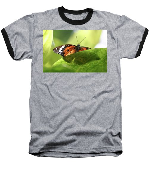 Preview - Baseball T-Shirt
