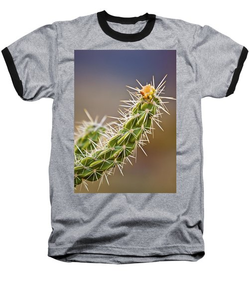 Prickly Branch Baseball T-Shirt